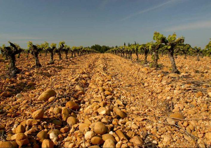A vendre Propriété viticole Montpellier | Réf 340138747 - Agence galerie casanova