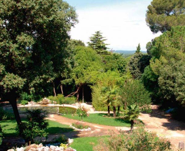 For sale Saint Jean De Vedas 340135799 Agence galerie casanova