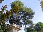 A vendre  Montpellier | Réf 340148384 - Agence galerie casanova