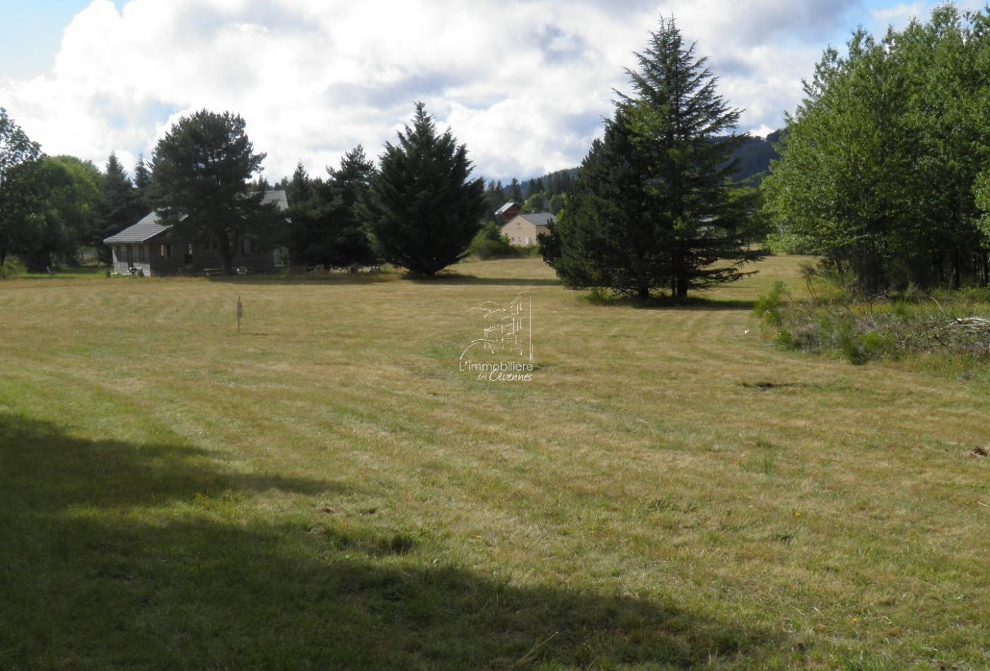 Terrain constructible en vente camprieu r f 340292291 for Prix terrain constructible