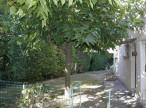 A louer Lamalou Les Bains 340523504 Lamalou immobilier