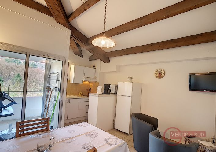 En location saisonnière Lamalou Les Bains 340523555 Lamalou immobilier