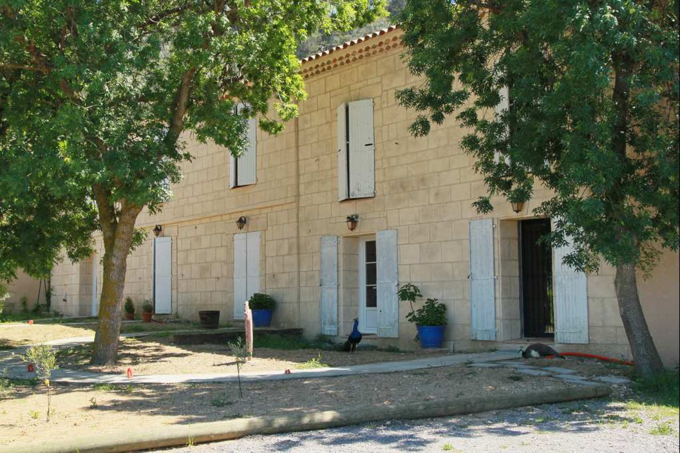 A vendre Narbonne 340571799 Albert honig