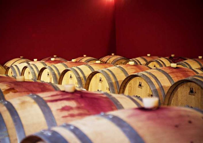 A vendre Propri�t� viticole Narbonne | R�f 340571799 - Albert honig