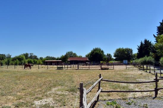 A vendre  Pezenas | Réf 340571986 - A.i.r. du sud