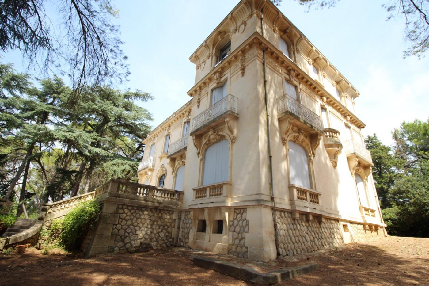 A vendre Montpellier 340572041 Albert honig