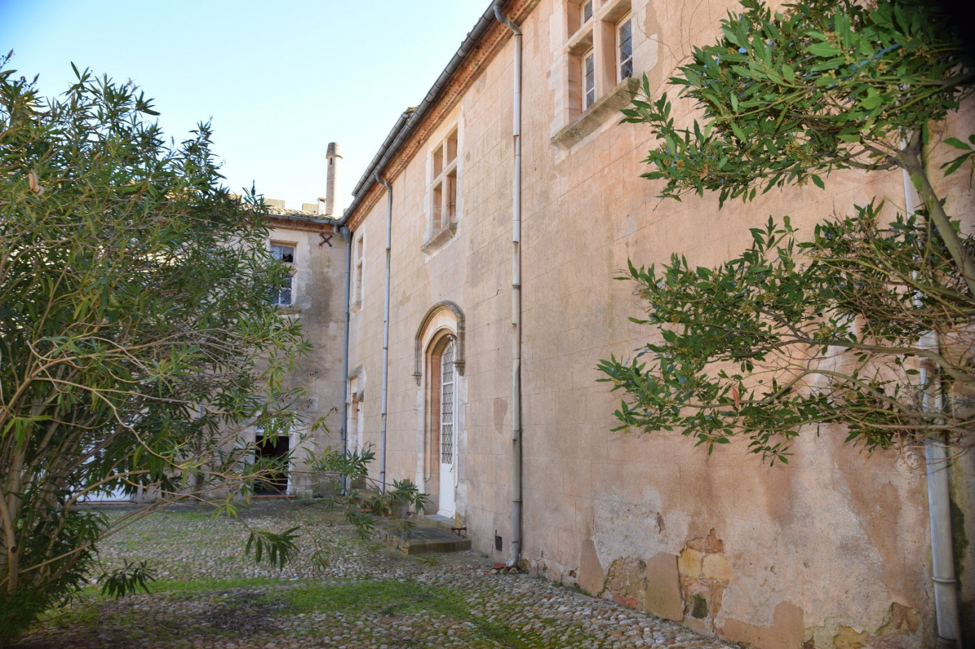 A vendre Narbonne 340572550 Albert honig