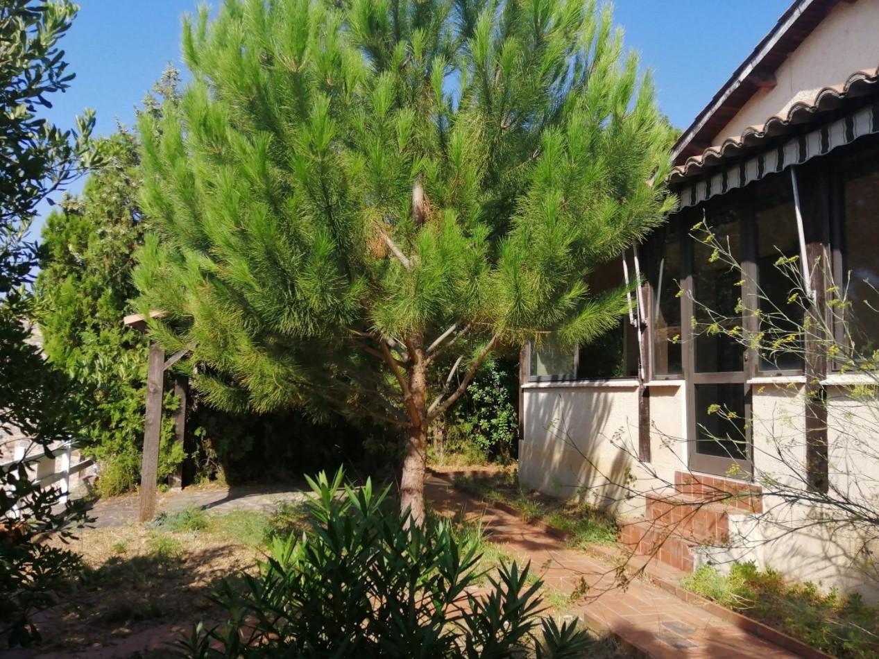 A vendre  Roquebrun | Réf 340572615 - Albert honig