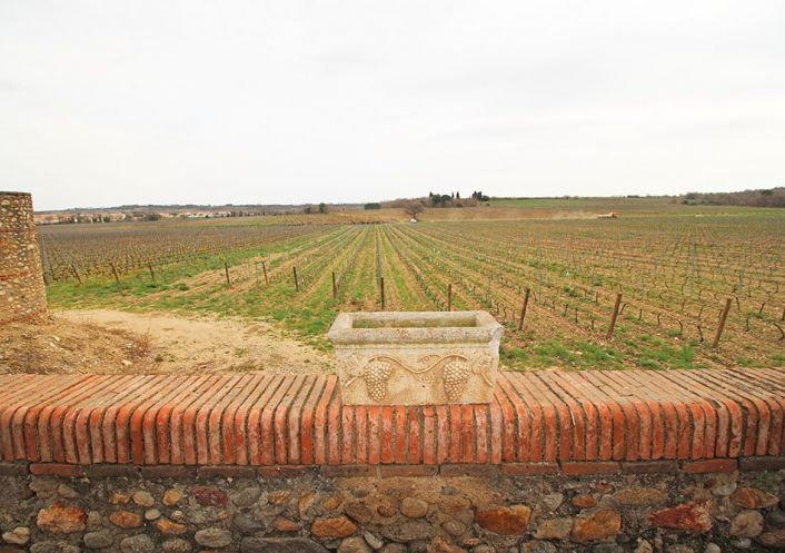 For sale Propri�t� viticole Perpignan | R�f 340572709 - Albert honig