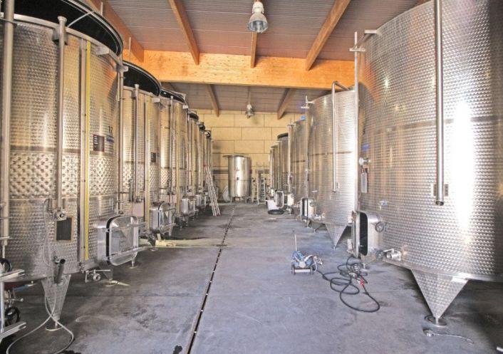 A vendre Propri�t� viticole Beziers | R�f 340572801 - Albert honig