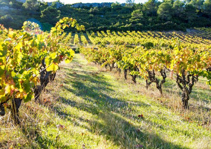 A vendre Propri�t� viticole Beziers | R�f 340572834 - Albert honig