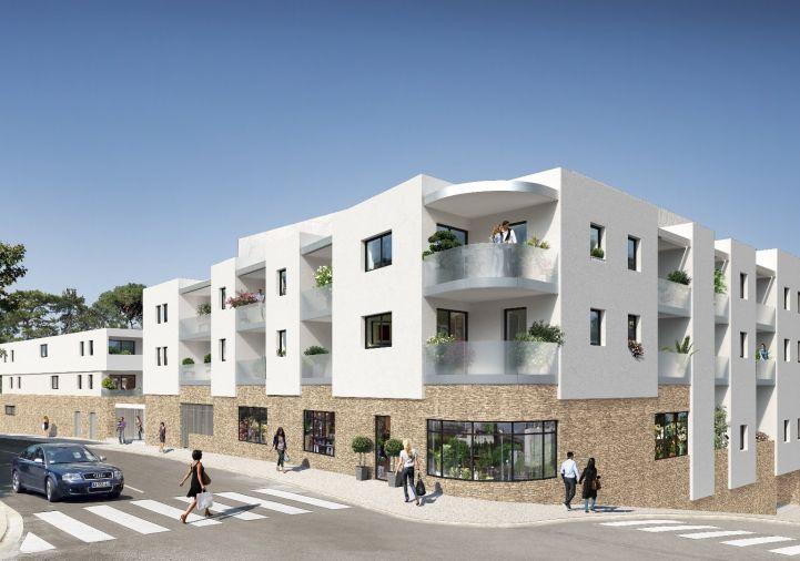 A vendre Castelnau Le Lez 340692506 Aviso immobilier