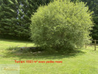 A vendre  Angles   Réf 34070122461 - Abessan immobilier