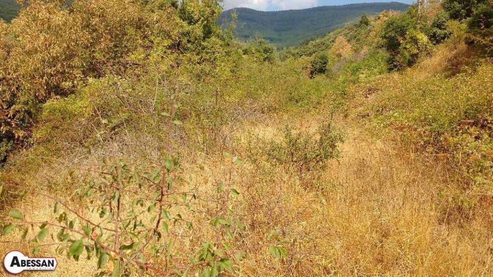 Terrain non constructible en vente saint pons de thomieres for Prix des terrains non constructibles