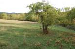 A vendre Ladern Sur Lauquet 3407064287 Abessan immobilier