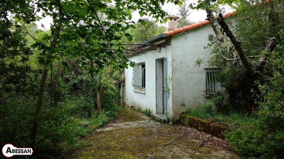 A vendre Riols 3407066727 Abessan immobilier