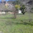 A vendre Riols 3407075794 Abessan immobilier
