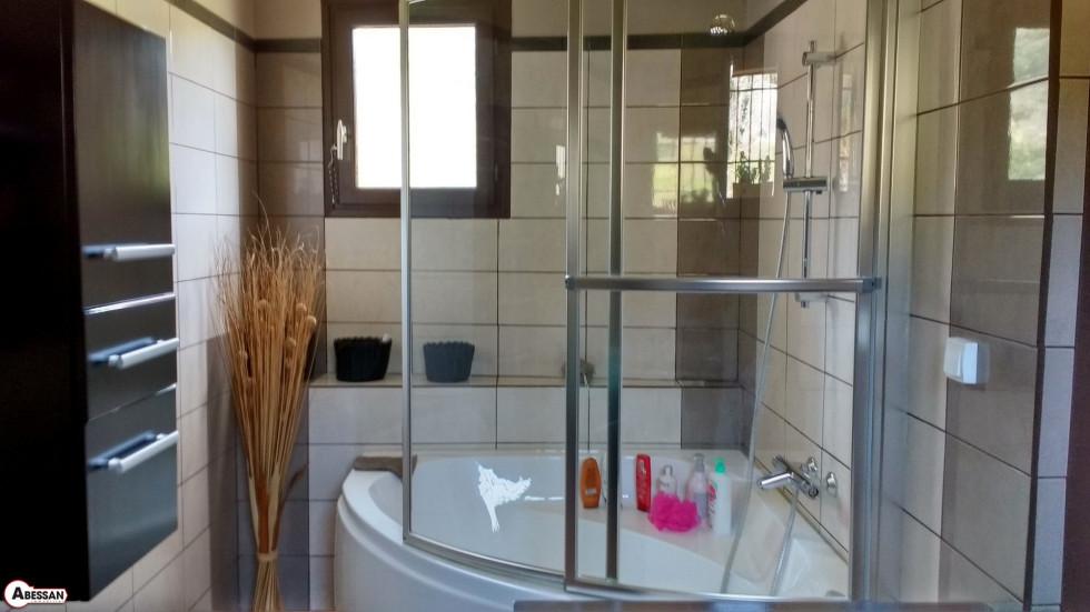 A vendre St Etienne D Albagnan 3407075997 Abessan immobilier