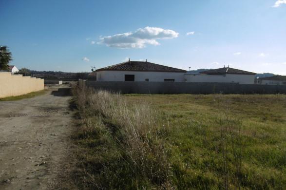 A vendre Saint Genies De Fontedit 340762671 Objectif terrain