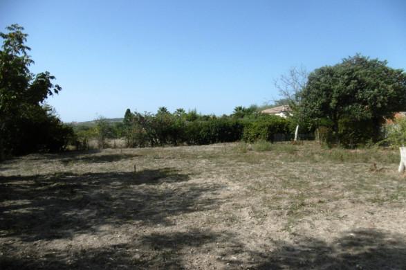 A vendre Saint Genies De Fontedit 340762685 Objectif terrain