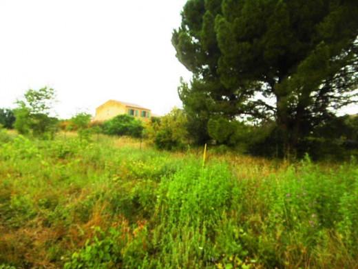 For sale  Servian | Réf 340762700 - Objectif terrain