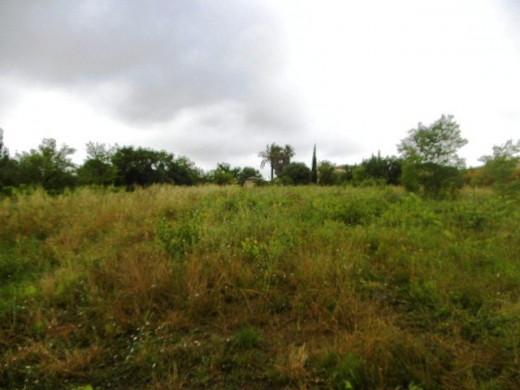 A vendre Servian 340762701 Objectif terrain