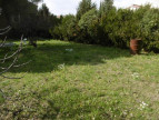 A vendre  Magalas   Réf 340762754 - Objectif terrain