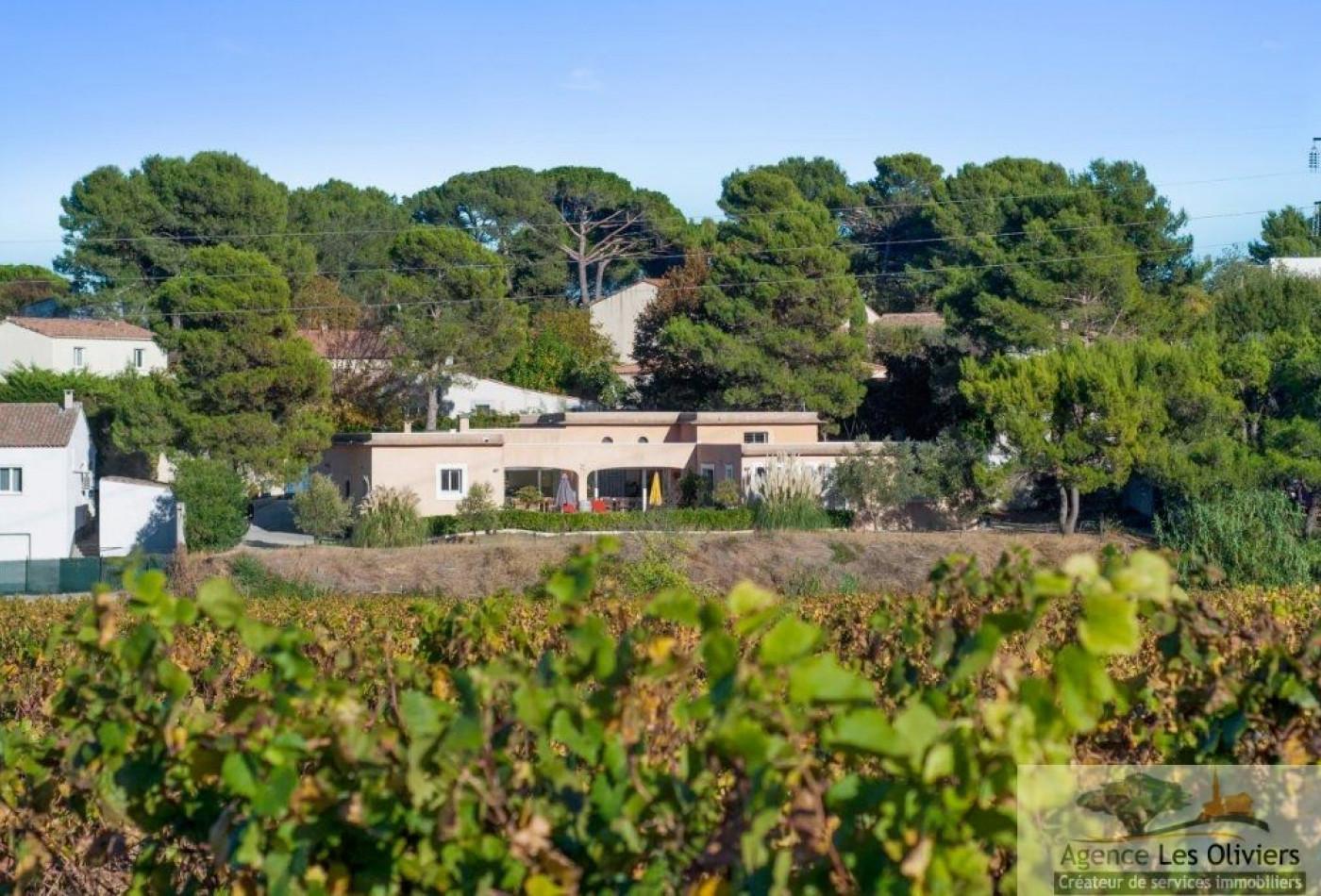 A vendre Juvignac 340782181 Agence les oliviers