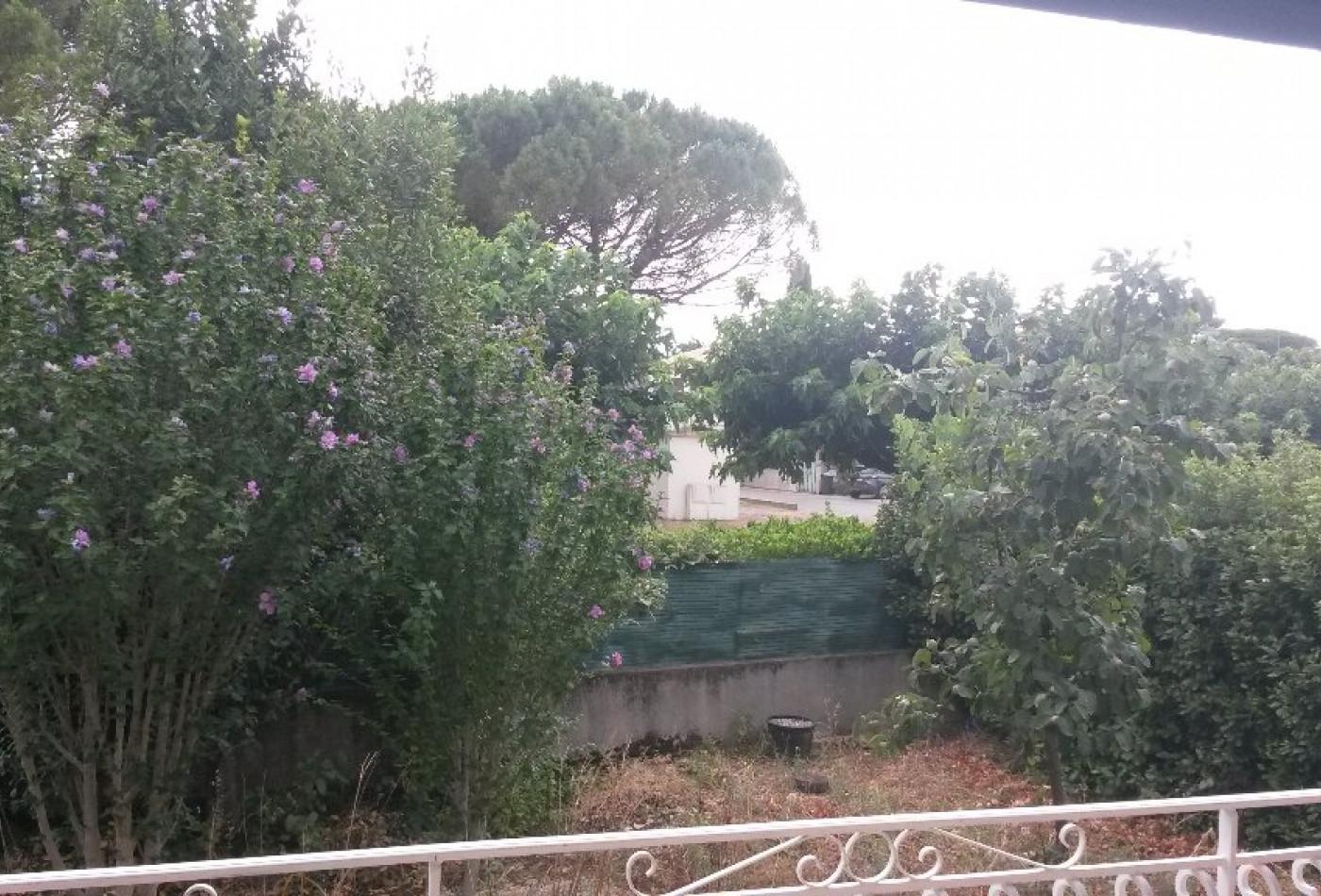 A louer Saint Georges D'orques 340782262 Agence les oliviers