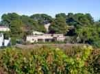 A vendre Juvignac 340782289 Agence les oliviers
