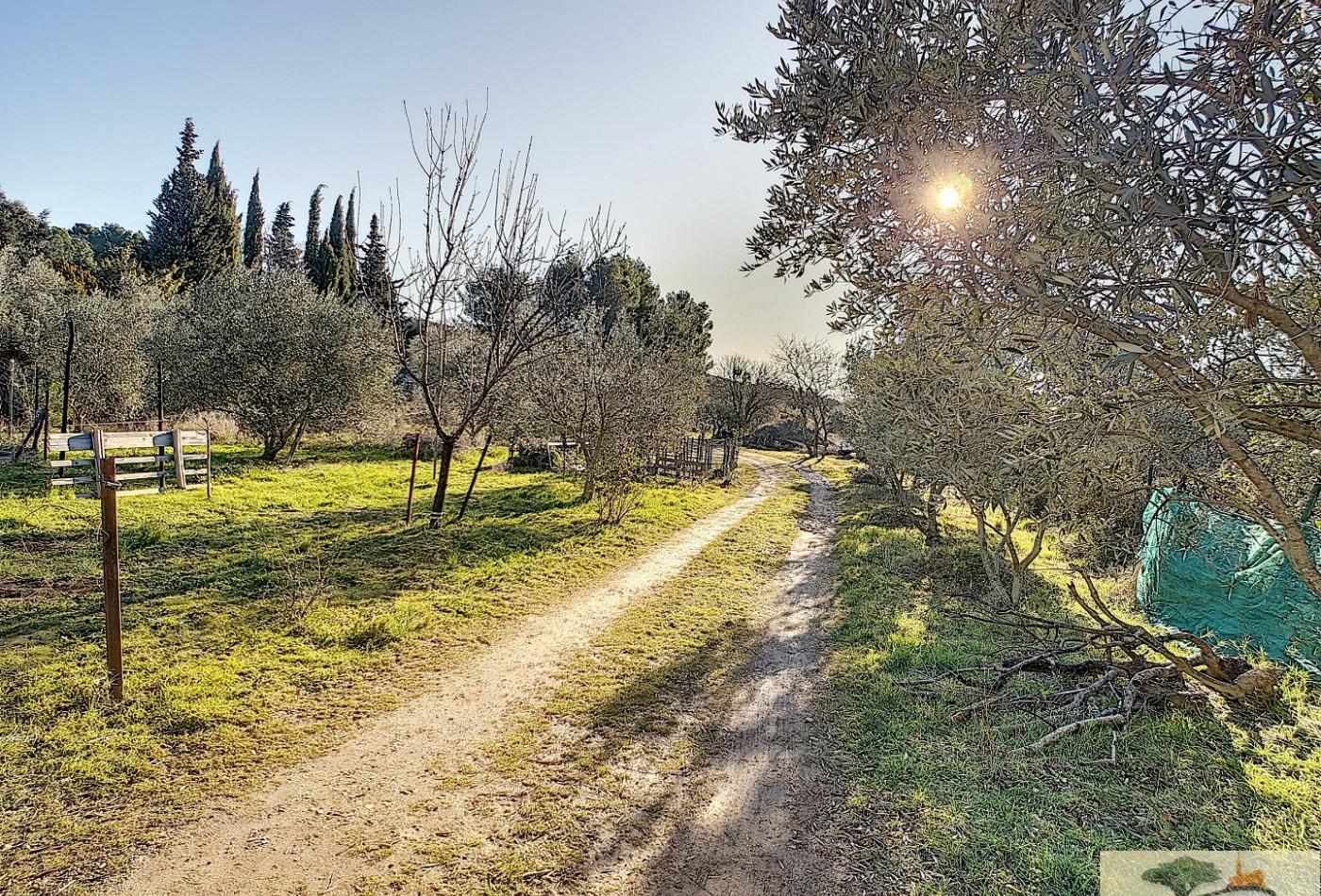 A vendre Pignan 340782296 Agence les oliviers