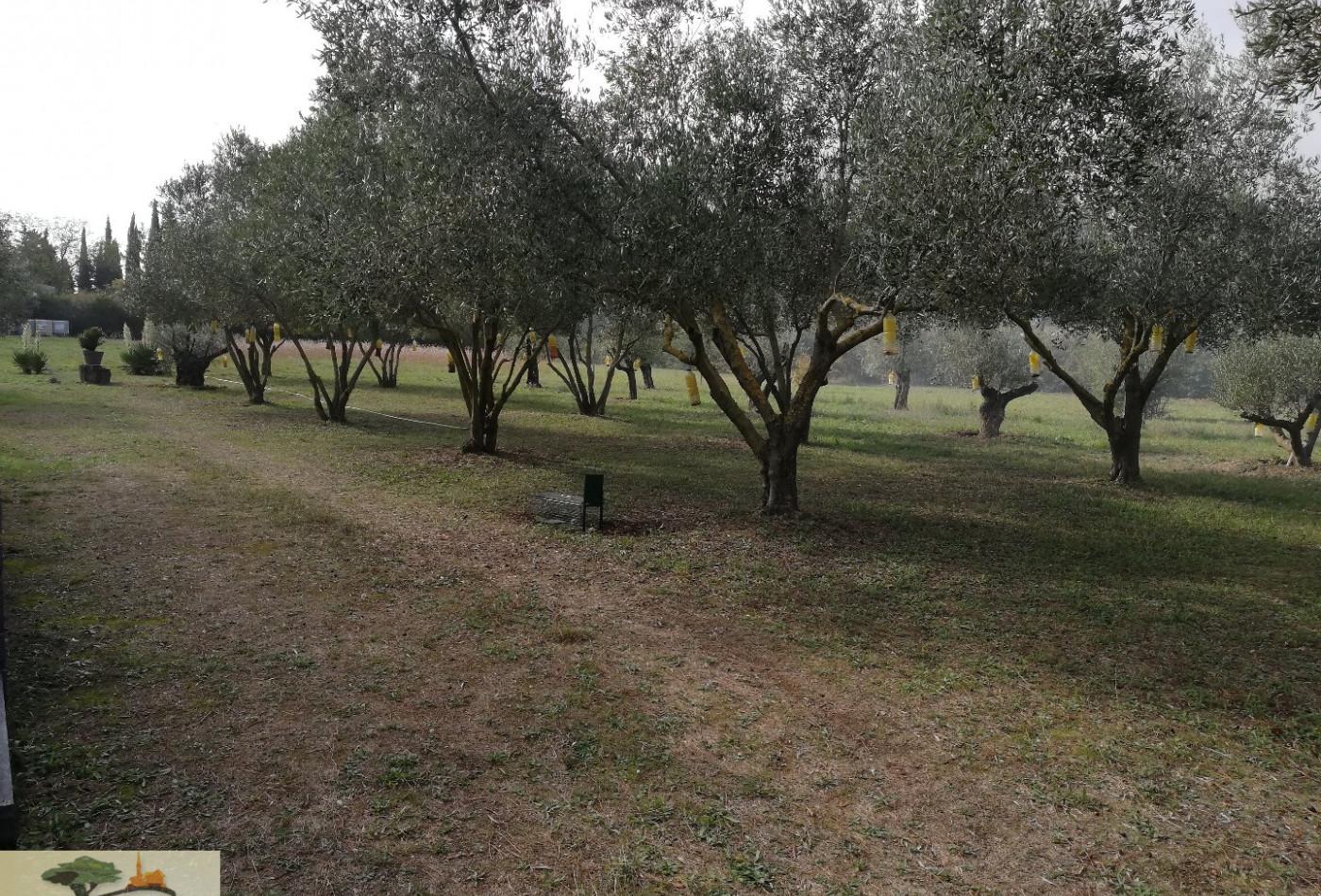 A vendre Pignan 3407830510 Agence les oliviers