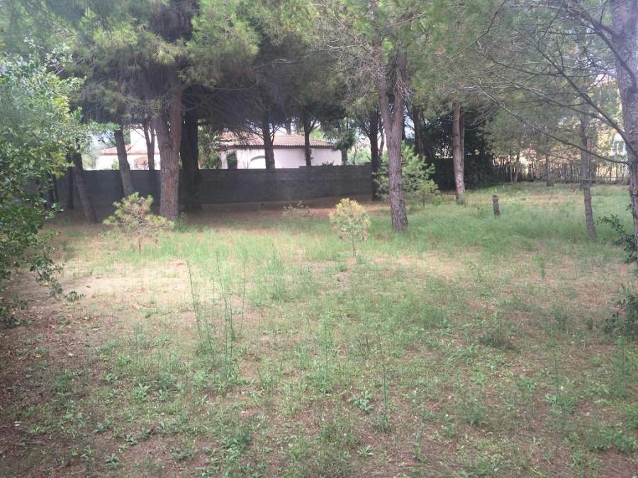 A vendre Le Grau D'agde 3408926464 S'antoni immobilier jmg