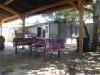 For sale Vias-plage 3408930176 S'antoni real estate