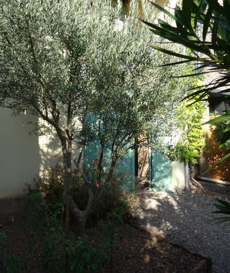 For sale Lodeve  3410011717 Jade immo
