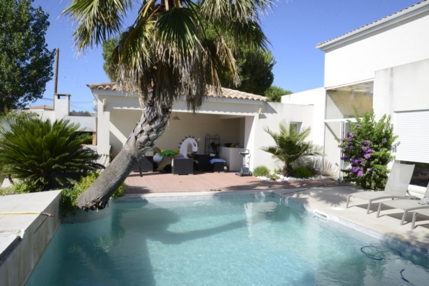 A vendre Le Cap D'agde 341174637 Azura agency