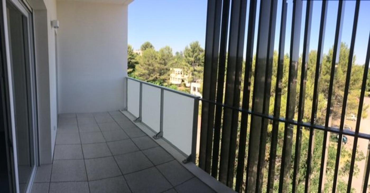 A louer Montpellier 341214777 Marianne habitat lattes