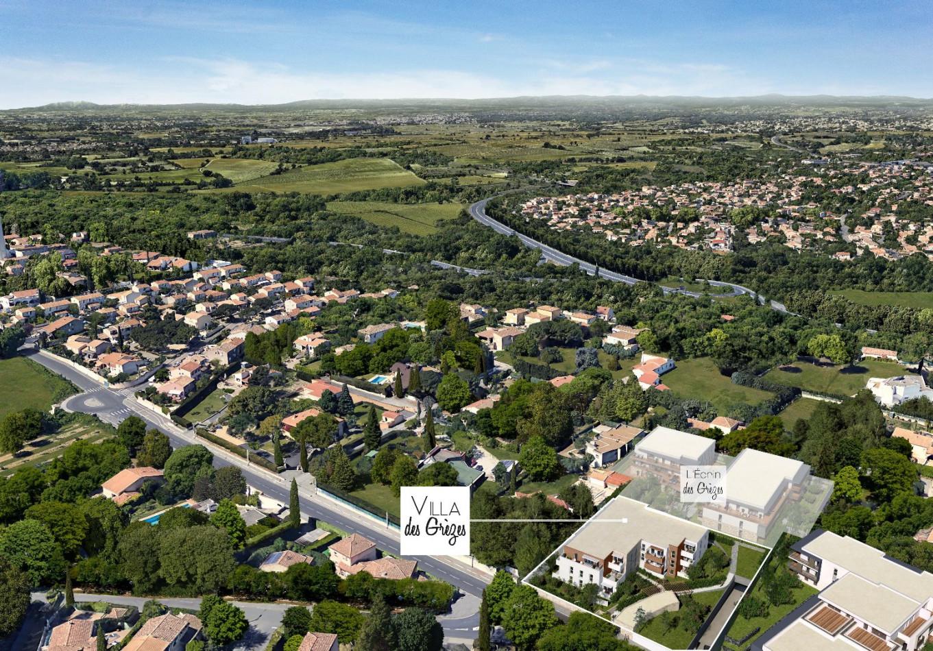 A louer Montpellier 341214885 Marianne habitat lattes