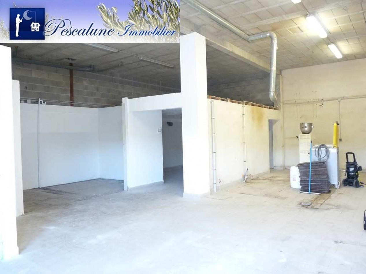A vendre Lunel 341431578 Pescalune immobilier