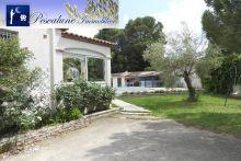 A vendre Villetelle 341431864 Pescalune immobilier