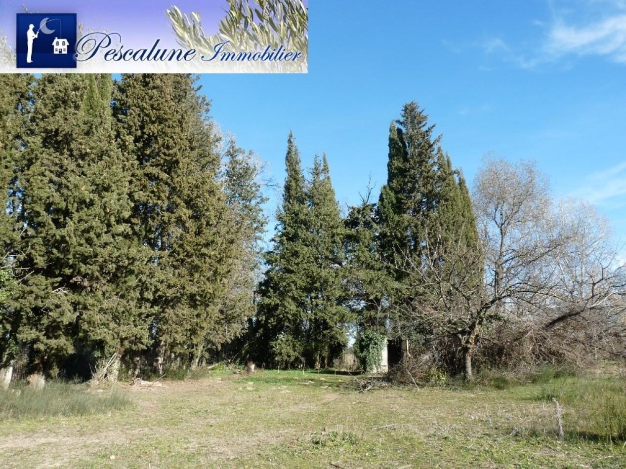 A vendre Villetelle 341432140 Pescalune immobilier