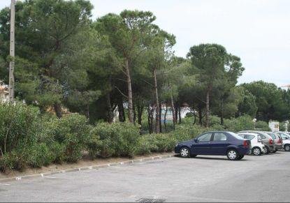 A louer Montpellier 341463940 Unik immobilier