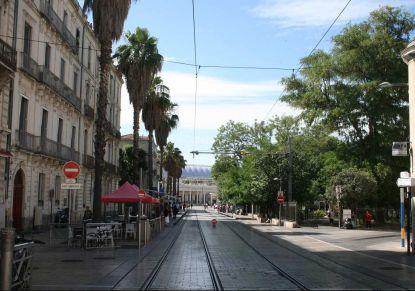 A louer Montpellier 341464137 Unik immobilier
