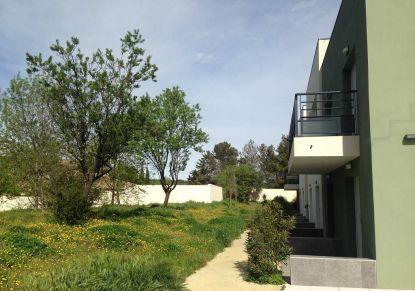 A louer Montpellier 341464494 Unik immobilier