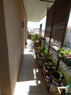 A vendre Agde 3414818678 S'antoni immobilier agde centre-ville