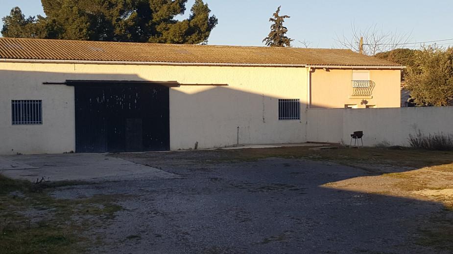 A vendre Agde 3414829064 S'antoni immobilier agde centre-ville