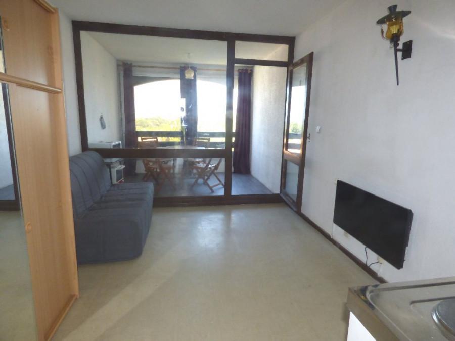 A vendre Le Cap D'agde 3414830291 S'antoni immobilier agde centre-ville
