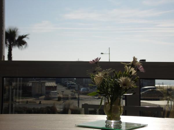For seasonal lettings Marseillan Plage 3414831779 S'antoni real estate