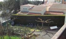 A vendre Le Cap D'agde  3414834392 S'antoni immobilier cap d'agde