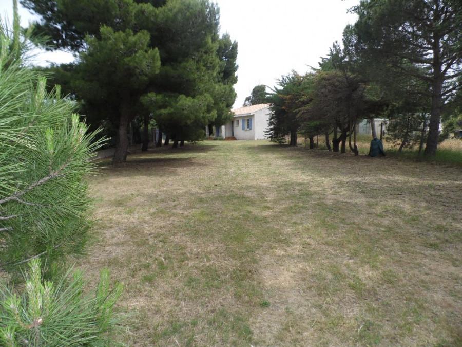 En location saisonnière Marseillan 3414930181 S'antoni immobilier marseillan centre-ville